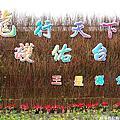 【遊】2012三星銀柳節