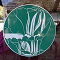 161009_十六湖國家公園(下湖) 札格雷布