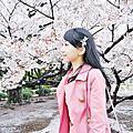 2014 04 Tokyo Trip (賞櫻)