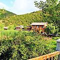 瀘沽湖-里格半島湖景