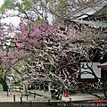 2002 日本京都梅園