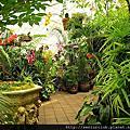 2012 舊金山植物園溫室花園