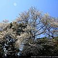 2014 東京皇宮