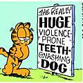 Garfield(2)
