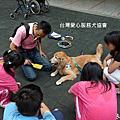 愛心服務犬 - 林口啟智高中服務