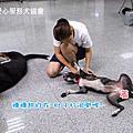 991003台北上課照片