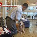 991113Bank爸到Doggy House講解狗狗訓練課程
