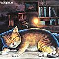 107.6.30.雲林虎尾-屋頂上的貓