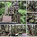 108.7.26.(2)太平山-檜木原始林自然步道