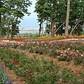 2009/5/2苗栗山吻泉小聚會