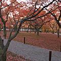 09 京都東福寺