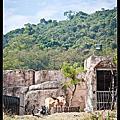 壽山動物園隨拍