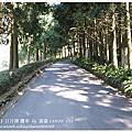 九族文化村之旅