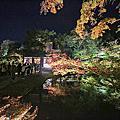 京都 / 高台寺秋の夜間拜觀(圓德院)