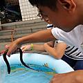 2014年孩子的夏日頭社藝術生活
