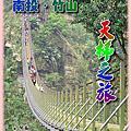 竹山天梯、鹿谷溪頭森呼吸之旅