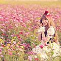 ♥白雪姬♥落羽松♥