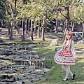 ♥格紋愛麗絲♥野餐♥