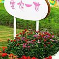 2014新社花海節與臺中國際花毯節