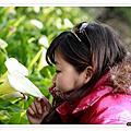 2011/03 陽明山&竹子湖&夢幻湖&擎天崗