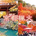 2017京都楓