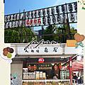 2013日本自助旅行