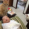 蔡寶包誕生啦-2014.05.14-09:19