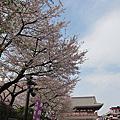 2013春 日本東京小旅行
