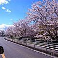 2013幸福名古屋