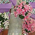 98年陽明山花季