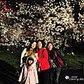 2014 家族追櫻第一日-二条城賞夜櫻