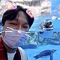2020-11-01 桃園X-PARK 水族館