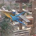 20140330高雄壽山動物園