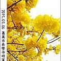 2014黃金風鈴木