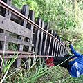 [山] 20070618-26 【太魯閣林場-嵐山工作站/森林鐵路】