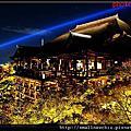 2011.11.21京都(夜訪清水寺)