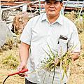 楊文慶 農夫