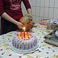 懶媳婦一歲生日