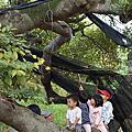 共學二團_新豐紅樹林(20121102)