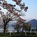 Day3我在北海道日日食的放題&賞櫻玩耍