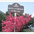 20090211 [台北] 陽明山中國麗緻