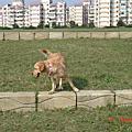 2007.01《美堤河濱公園》