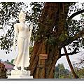 2010 3月泰國行