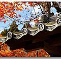 2010 11月日本關西行