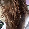 Kerasys可瑞絲香氛洗髮精-魅力雛菊