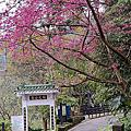 三峽佛山寺