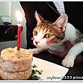 生日快樂~格格一歲了