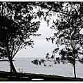 2010-06-20淺水灣