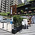 國內旅遊●台中市TSUTAYA BOOKSTORE台中市政店