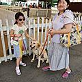 國外旅遊●日本栃木県那須どうぶつ王国:レンタル犬